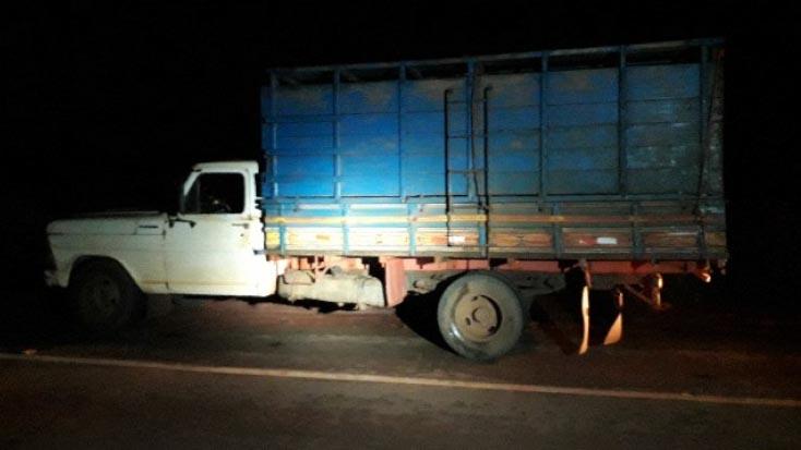 PMs de Pirassununga detém suspeitos por furto de animal