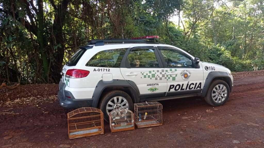 PM Ambiental aplica multa de R$ 12 mil reais em duas ações