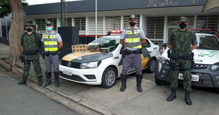 Em ação da PM Rodoviária e Ambiental faz multa no valor de R$ 120 mil reais