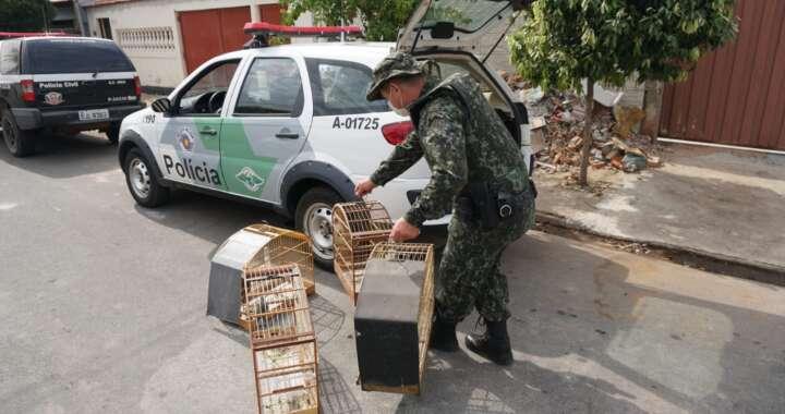 """""""Operação Alma Despida"""" foi realizada em ação conjunta na região de Mogi Guaçu"""